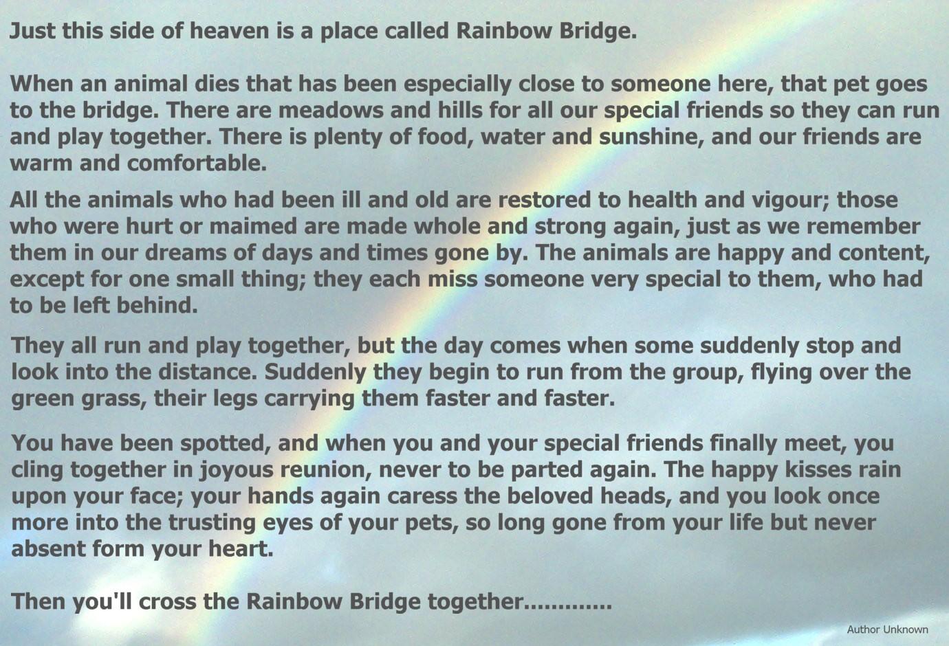 photo relating to Rainbow Bridge Printable named Rainbow Bridge